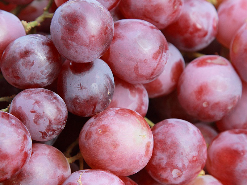 Chile Grapes