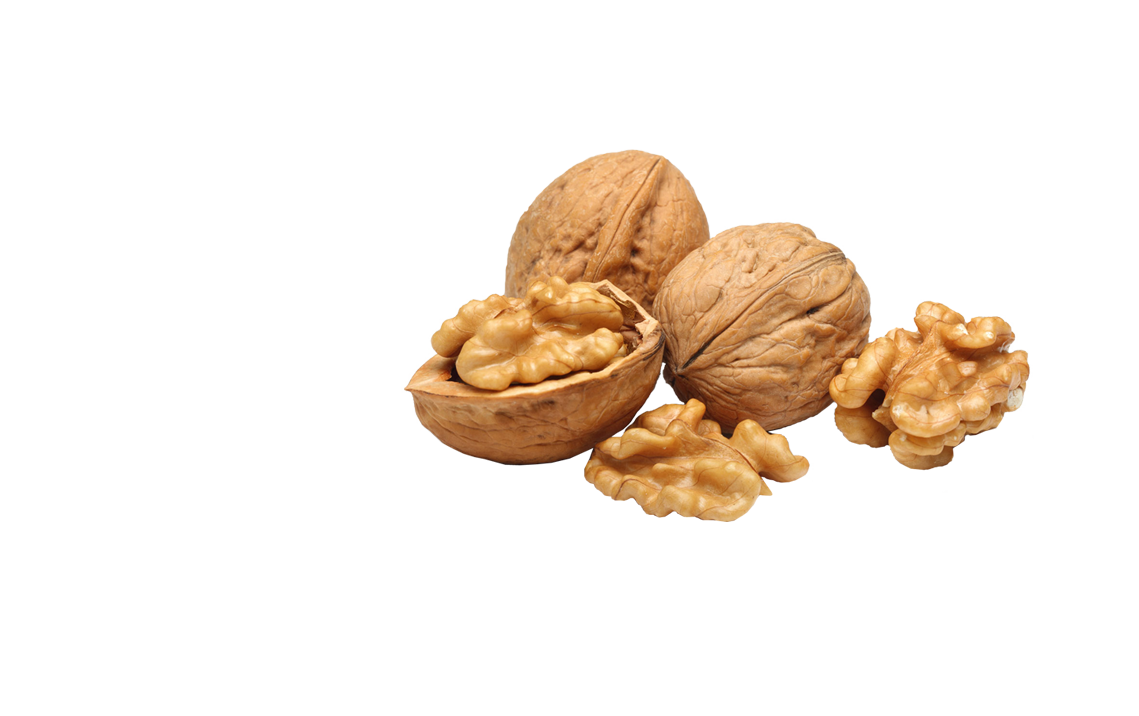 Chilean Walnut